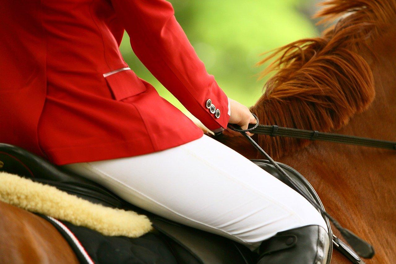 selle équitation